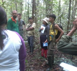 Field course participants, led by Dr. Cam Webb (green shirt), learn how to identify rainforest trees and plants.