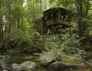 The Cabang Panti Research station in the heart of Gunung Palung National Park is home to our researchers