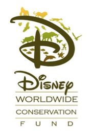logo disney worldwide
