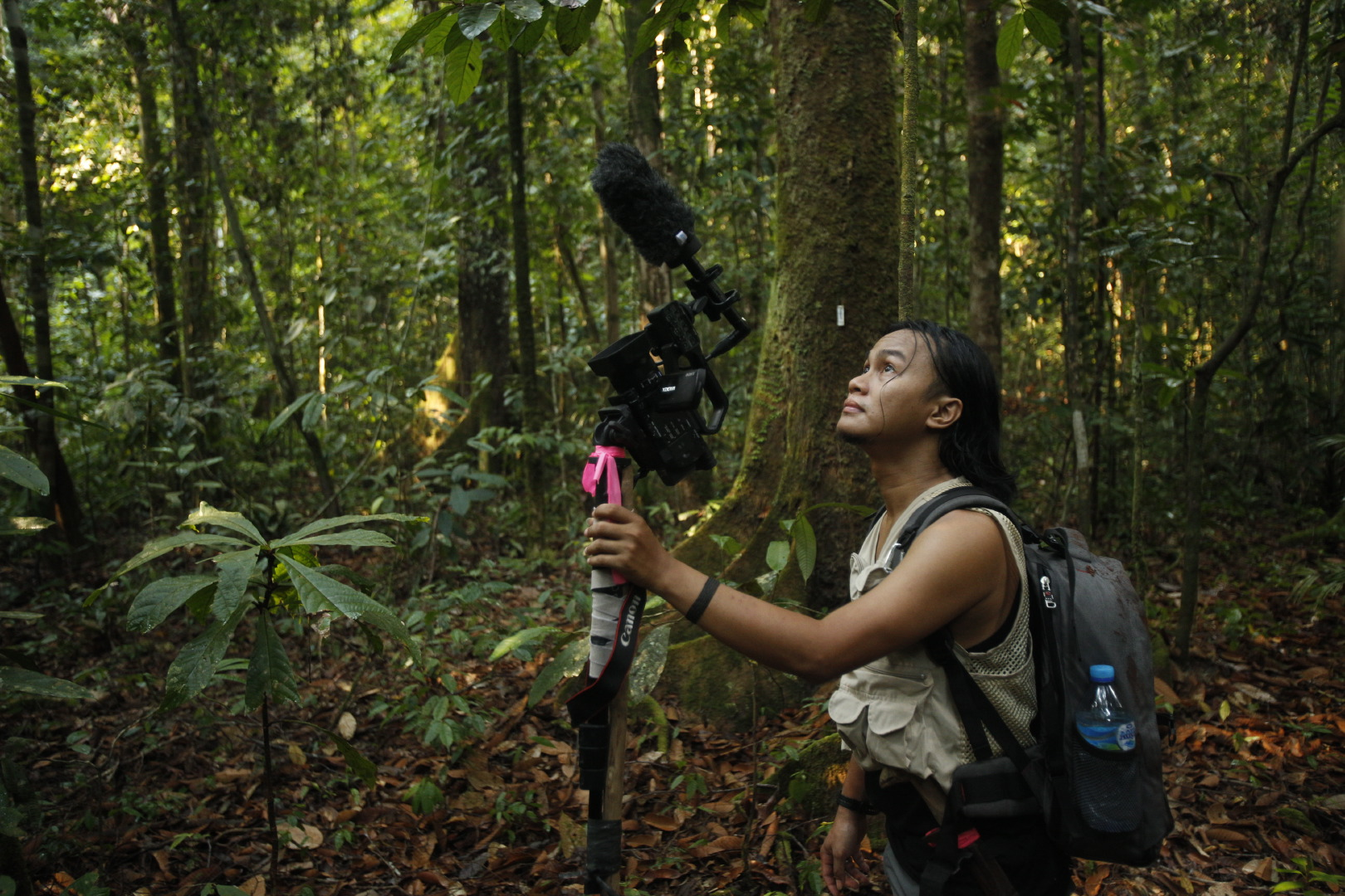 Research Director, Wahyu Susanto, demonstrates use of the stick monopod method for attaching a video camera, as he keeps a lookout for interesting orangutan behaviors to capture on film.