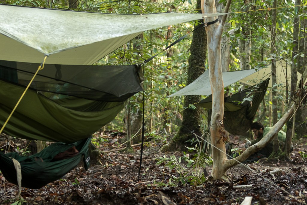 Hammocks set up in the rainforest, although simple, are a comfortable camp for Robert and his field assistants. Photo © Robert Rodriguez Suro